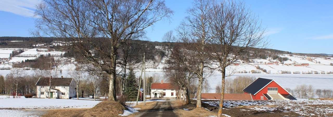 практика в Норвегии